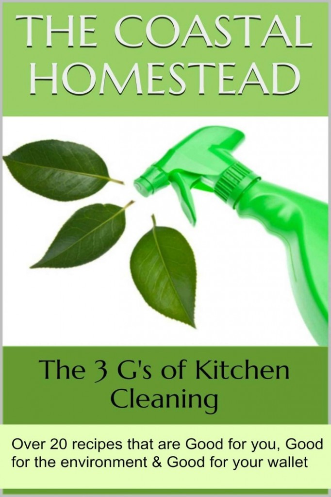 3 Gs of Kitchen Cleaning cover image