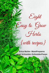 8 Easy to Grow Herbs with Recipes by Erica Muller and Angi Schneider cover image