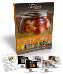 Lacto-fermentation-ebook-by-Wardee-Harmon1-255x300