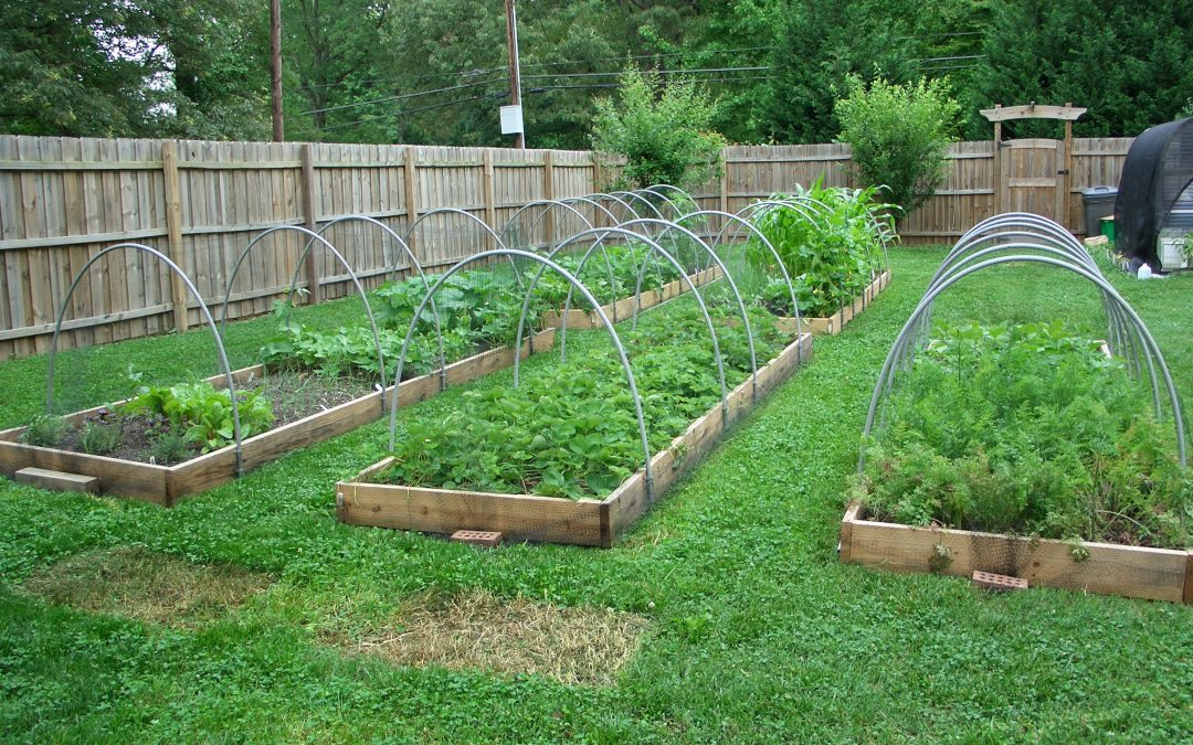 How to Grow More Food with Season Extension